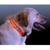 Nite Ize NiteDawg LED-Collar rot